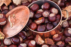 Chestnuts and copper kettle, autumn concept image Stock Photo