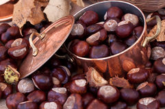 Chestnuts and copper kettle, autumn concept image Royalty Free Stock Images