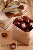 Chestnuts in craft bag on rusted background Royalty Free Stock Photo