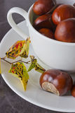 Chestnuts in a cup. And autumn leaves on the table Stock Photography