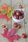 Chestnuts in a cup. Chestnuts in a bowl and scattered on the table with autumn leaves Royalty Free Stock Photography