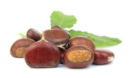 Chestnuts Edible Nuts On White Royalty Free Stock Image