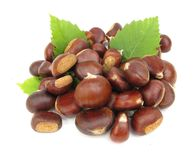 Chestnuts edible nuts on white Royalty Free Stock Photography