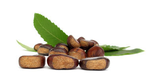 Chestnuts edible nuts on white Stock Images
