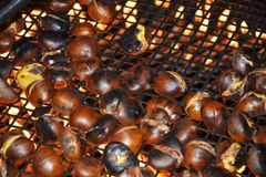 Chestnuts on fire, close up and background Stock Image