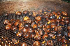 Chestnuts, flames and smoke Stock Image