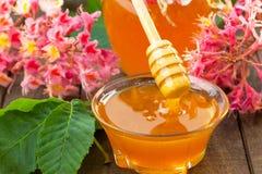 Chestnuts flower honey Royalty Free Stock Photo