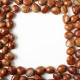 Chestnuts frame Royalty Free Stock Photos