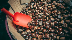 Chestnuts Stock Photo