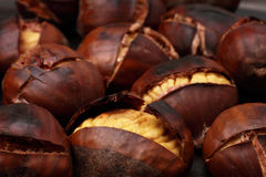 Chestnuts/grilled. Delicious chestnut on the background Stock Photos