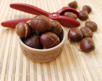 Chestnuts for grilling cut with a special knife Stock Photos