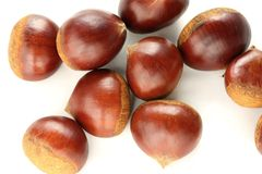 Chestnuts group stock photography