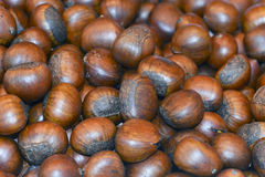 Chestnuts. Group of edible chestnuts, use for background Royalty Free Stock Photo