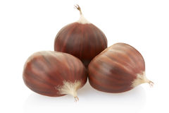 Chestnuts group Stock Photo