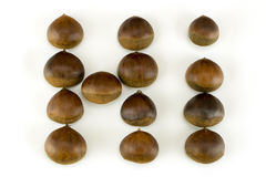 Chestnuts grouped in hi word Royalty Free Stock Photos