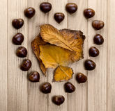 Chestnuts Heart royalty free stock image