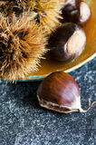 Chestnuts and hedgehogs Stock Image