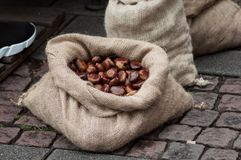 Chestnuts in hessian bags at the market. Closeup of chestnuts in hessian bags at the market stock images