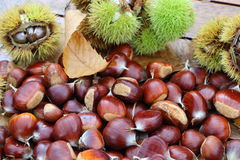 Chestnuts, husk and dead leaves. During autumn Stock Photos