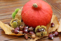 Chestnuts, husk, oak, pumpkin and dead leaves. During autumn Royalty Free Stock Photo