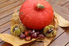 Chestnuts, husk, pumpkin and dead leaves. On a table during autumn Stock Photo