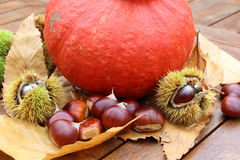 Chestnuts, husk, pumpkin and dead leaves. On a wooden table Royalty Free Stock Images