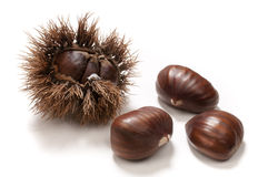 Chestnuts. In the husk and  on white Stock Photography