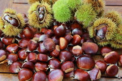 Chestnuts and husks Royalty Free Stock Photo