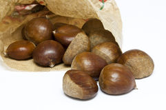 Chestnuts (I) Stock Image