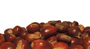 Chestnuts, isolated with white background royalty free stock image