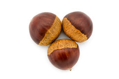 Chestnuts isolated on white background. Close up of some chestnuts isolated on white background Stock Photos