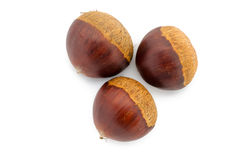 Chestnuts isolated on white background. Close up of some chestnuts isolated on white background Royalty Free Stock Photos