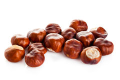 Chestnuts isolated on white background food Stock Image