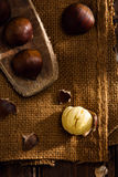 Chestnuts on Jute Stock Photography