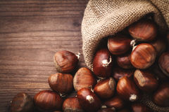 Chestnuts in jute Stock Image