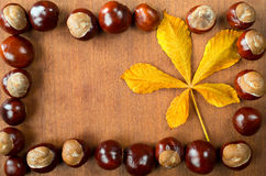 Chestnuts with leaf Royalty Free Stock Image