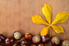 Chestnuts with leaf Stock Photography