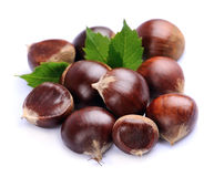 Chestnuts with leafs Stock Photography