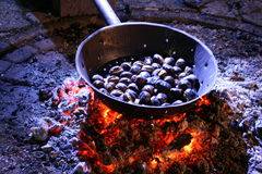 Chestnuts by Night Stock Photography