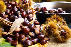 Chestnuts on an old board. Stock Images