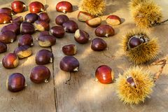 Chestnuts on the old wooden and rustic table. royalty free stock photos