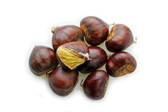 Chestnuts open Stock Images