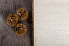 Chestnuts and open Book Stock Image