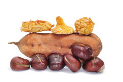 Chestnuts, panellets and sweet potato Royalty Free Stock Image