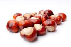 Chestnuts part 2 Royalty Free Stock Photo