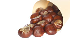 Chestnuts. Ripe chestnuts isolated on a white background Royalty Free Stock Photo