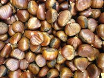 Chestnuts for Sale. Royalty Free Stock Photography