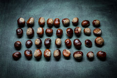 Chestnuts. Scattered on the board Royalty Free Stock Photography