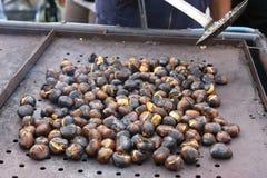 Chestnuts seasonal fruit farming Emilia Romagna Italy Royalty Free Stock Photos