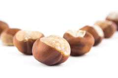 Chestnuts with selective focus. Isolated on white background Royalty Free Stock Photos